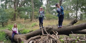 WildTribe holiday club  in the Heart of England Forest @ heart of england forest | Studley | England | United Kingdom